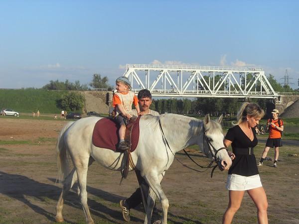 Иппотерапия и лечебная верховая езда (ЛВЕ) - Миша