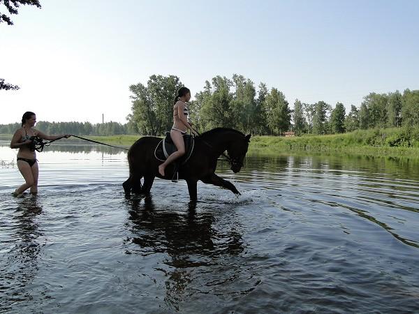 Лошади - Купание