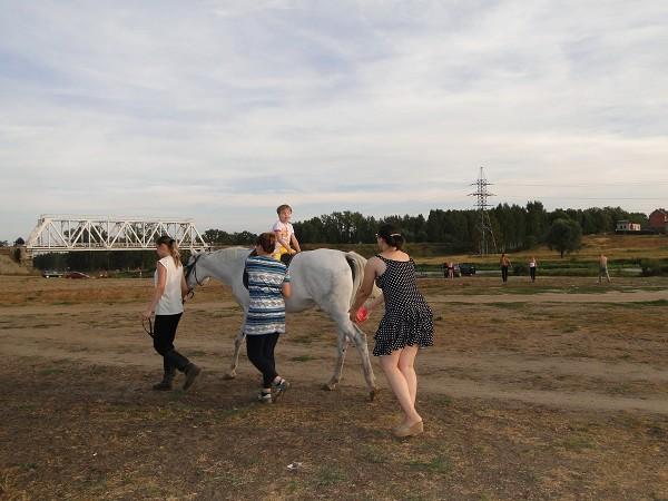 Иппотерапия и лечебная верховая езда (ЛВЕ) - Иппотерапия. Упражнение с мячом