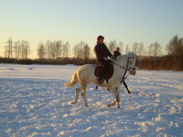 Верховая езда / Конный спорт - Верховая езда. Ирина на Нике
