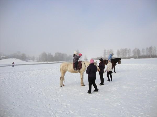 Иппотерапия и лечебная верховая езда (ЛВЕ) - Иппотерапия. Играем в мяч