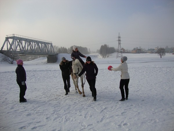 Иппотерапия и лечебная верховая езда (ЛВЕ) - Иппотерапия. Играем с мячом