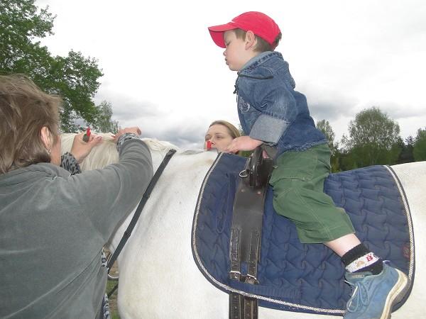 Иппотерапия и лечебная верховая езда (ЛВЕ) - Тёма на Нике