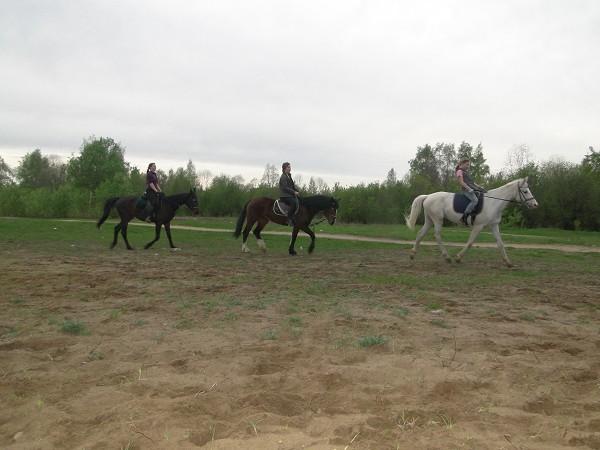 Верховая езда / Конный спорт - Рысь. Девочки стараются