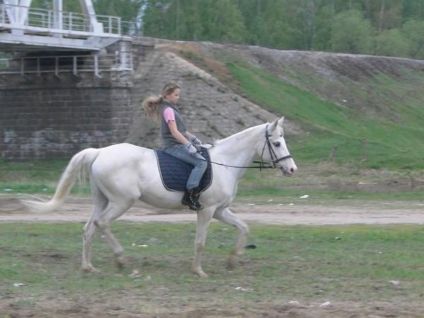 Верховая езда / Конный спорт - Соня на Нике