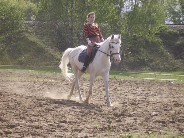 Верховая езда / Конный спорт - Оля на Нике