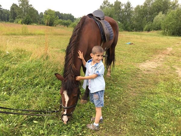 Иппотерапия и лечебная верховая езда (ЛВЕ) - Иппотерапия это не только занятия в седле.