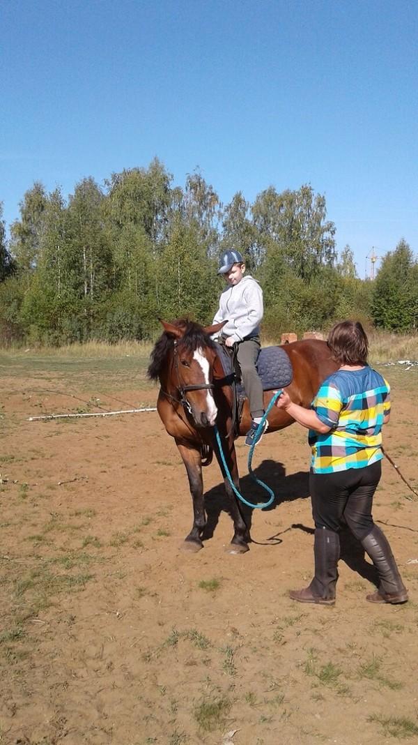 Иппотерапия и лечебная верховая езда (ЛВЕ) - Пробуем управлять лошадью