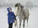 Лошади - Ника (маленькая)