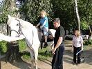 Иппотерапия и лечебная верховая езда (ЛВЕ) - Алеша