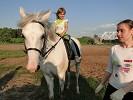 Верховая езда / Конный спорт - Тренировка. Дарина на Нике