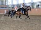Верховая езда / Конный спорт - Ирина на Соне. Тренировка