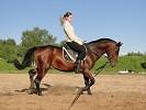 Верховая езда / Конный спорт - Тренировка. лена на Паше