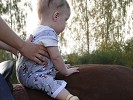 Иппотерапия и лечебная верховая езда (ЛВЕ) - Иппотеапия. Эрика