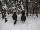 "Прогулки на лошадях - ""Цунами на прогулке 2 января 2011 года"""