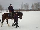 Верховая езда / Конный спорт - Верховая езда. Новички (март 2011)