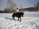 Верховая езда / Конный спорт - Верховая езда. Рысь