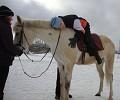 Иппотерапия и лечебная верховая езда (ЛВЕ) - Миша на Нике. Наклоны.