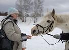 Иппотерапия и лечебная верховая езда (ЛВЕ) - Ну как же без морковки?...
