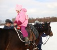 Иппотерапия и лечебная верховая езда (ЛВЕ) - Иппотерапия. Спиной к движению