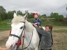 Иппотерапия и лечебная верховая езда (ЛВЕ) - Занятие с Темой