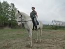 Верховая езда / Конный спорт - Тренировка. Соня на Нике