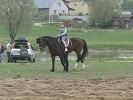 Верховая езда / Конный спорт - Верховая езда. Тренировка