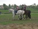 Верховая езда / Конный спорт - Тройкой