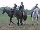 Верховая езда / Конный спорт - Езда в смене