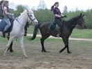 Верховая езда / Конный спорт - Кто кого догонит...