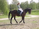 Верховая езда / Конный спорт - Ксюша и Водопад