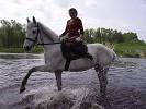 Верховая езда / Конный спорт - Ника. И вот так...
