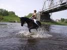 Верховая езда / Конный спорт - И Водопад