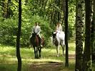 Свадьба на лошадях - Жених и невеста