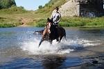 Верховая езда / Конный спорт - Купание
