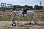 Иппотерапия и лечебная верховая езда (ЛВЕ) - Иппотерапия. Выполнение упражнения.