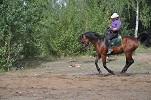 Верховая езда / Конный спорт - Ирина и Водопад. Галоп
