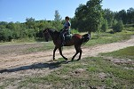 Верховая езда / Конный спорт - Очередная тренировка. Ирина на Водопаде