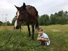 Иппотерапия и лечебная верховая езда (ЛВЕ) - Максимка