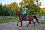 Верховая езда / Конный спорт - Тренировка. Людмила и Паша