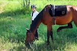 Верховая езда / Конный спорт - Женя и Водопад
