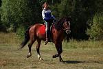 Верховая езда / Конный спорт - Дарина на Хохме