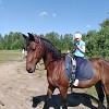 Иппотерапия и лечебная верховая езда (ЛВЕ) - Занятие на Паше