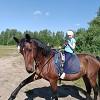 """Иппотерапия и лечебная верховая езда (ЛВЕ) - И  просто """"ножку"""""""